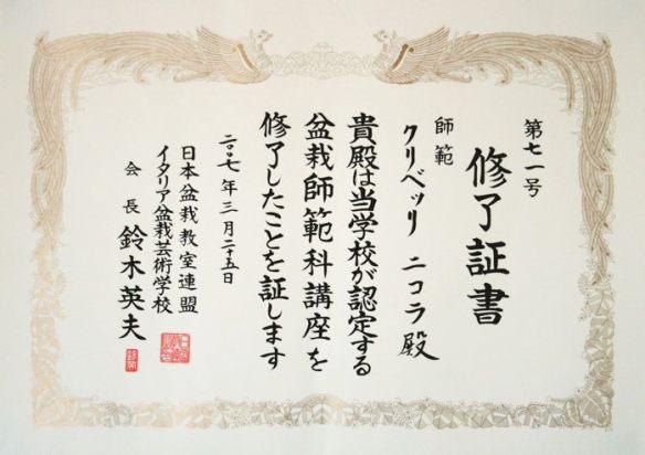 diploma Hamano