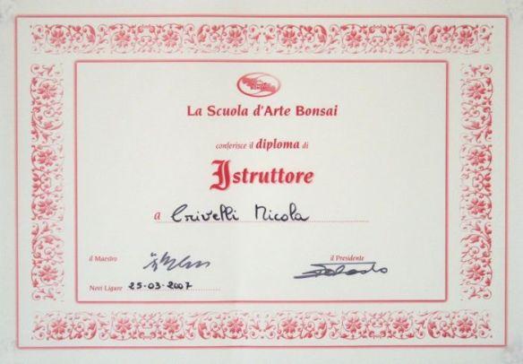 diploma Istruttore