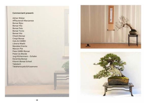 Libretto mostra bonsai20