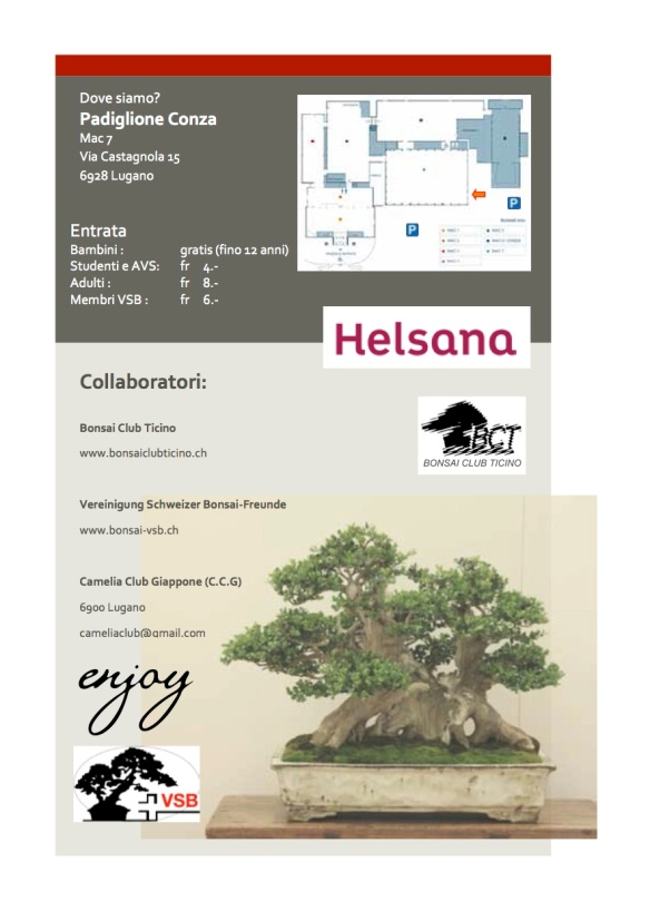 Libretto mostra bonsai21