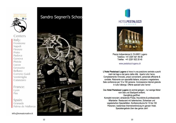 Libretto mostra bonsai7