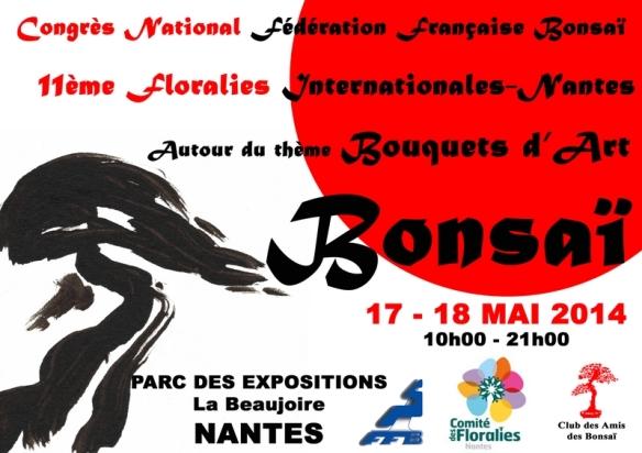 affiche congres Nantes 2014 Mini-2