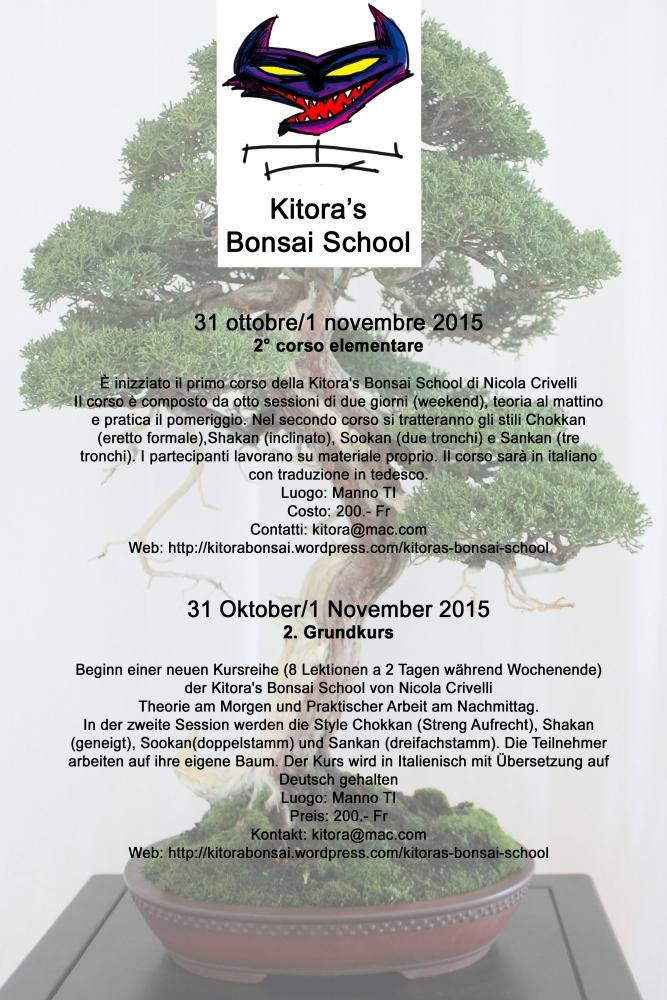 Programma del primo corso della Kitora's Bonsai School (1/6)