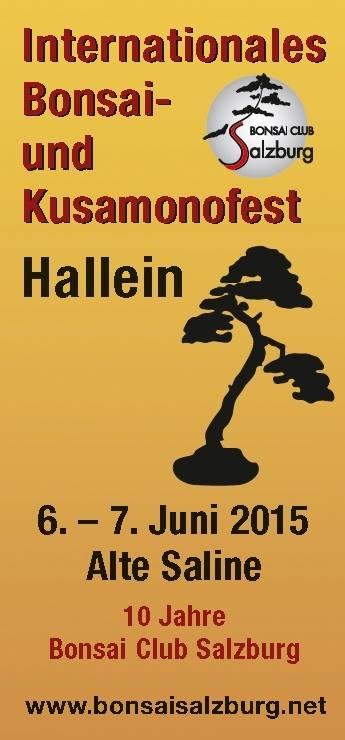 Internationales Bonsai- und Kusamonofest Hallein 2015 (1/6)