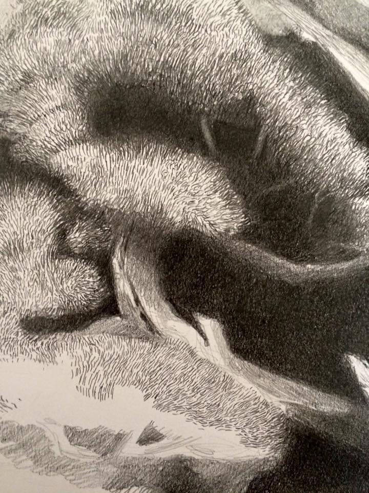 Arte-Lone Wolf (3/6)
