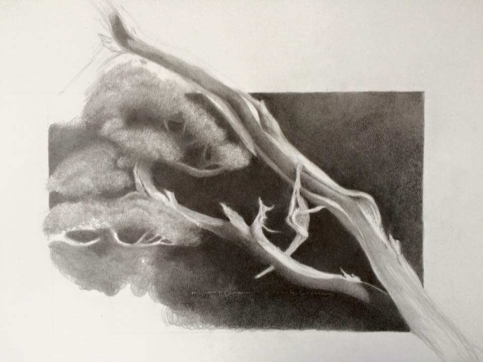 Arte-Lone Wolf (1/6)