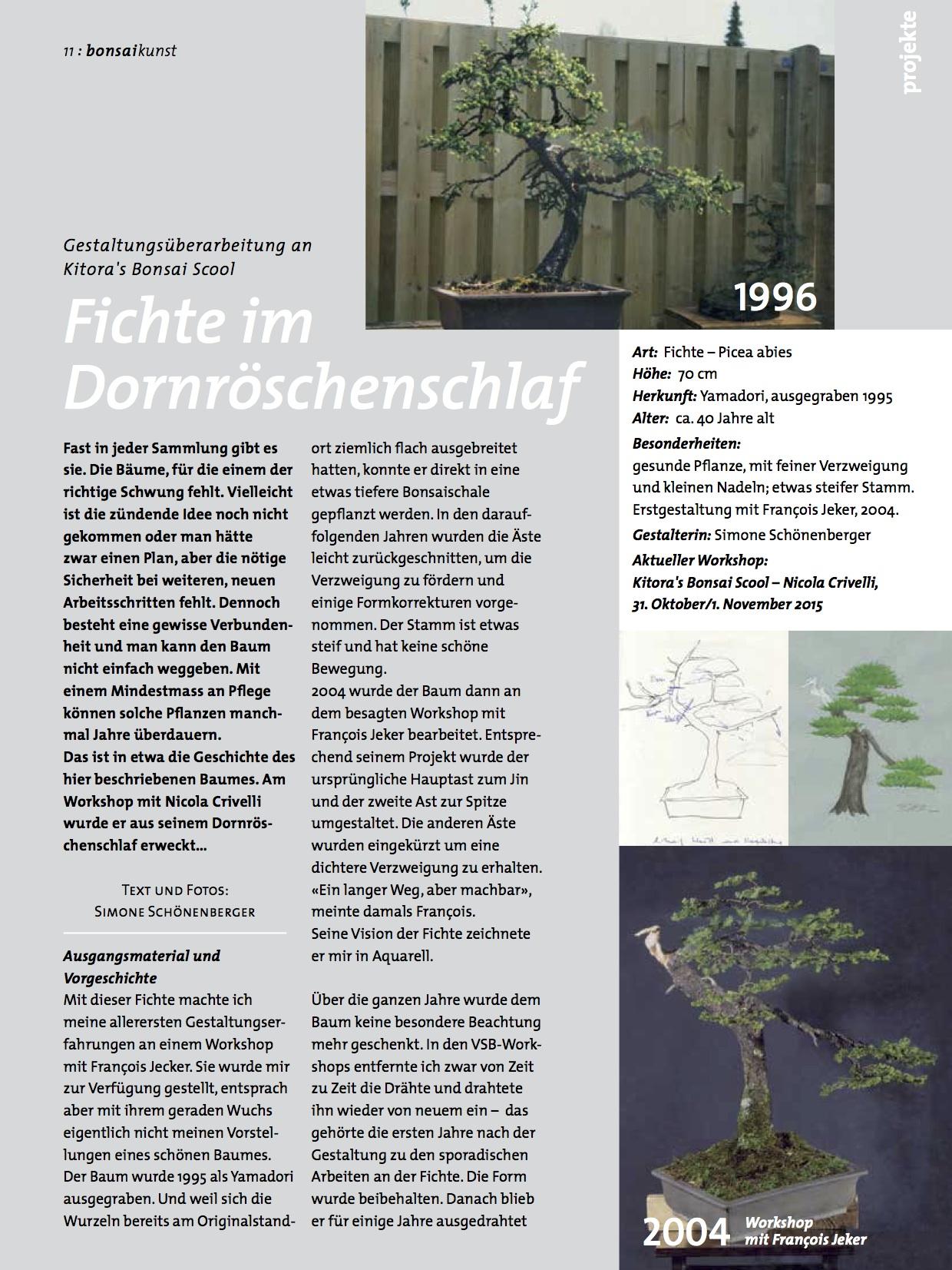 BK_76_SS-Fichte-im-Dornröschenschlaf11