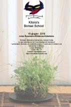 corso kusamono kitora school 1 ok