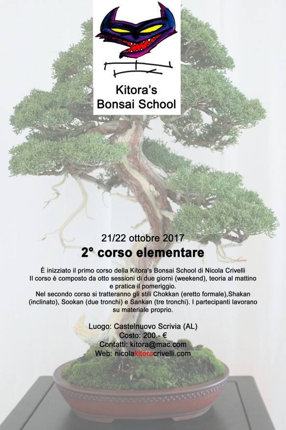 2corso italia kitora school